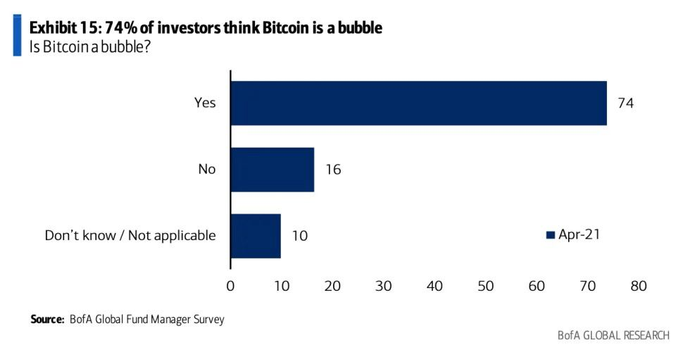 74% of Investors Thinks BTC as a Bubble