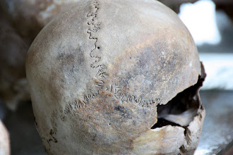 Photo: Year 2 Day 35 -  One of the Skulls