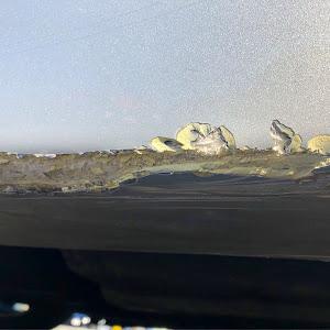 RX-8  Type S ( LA-SE3P '03 )のカスタム事例画像 らぐ太さんの2019年02月02日14:05の投稿