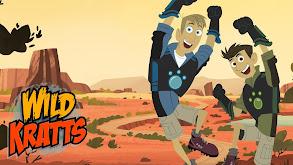Wild Kratts thumbnail