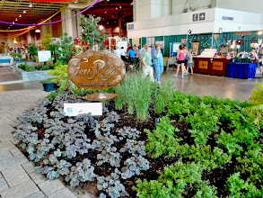 Photo: Every year, we create a garden at the Canadian National Exibition. We use these opportunities to educate the public. This garden uses all native plants and cultivars of native plants.