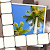 Picture Perfect Crossword file APK for Gaming PC/PS3/PS4 Smart TV