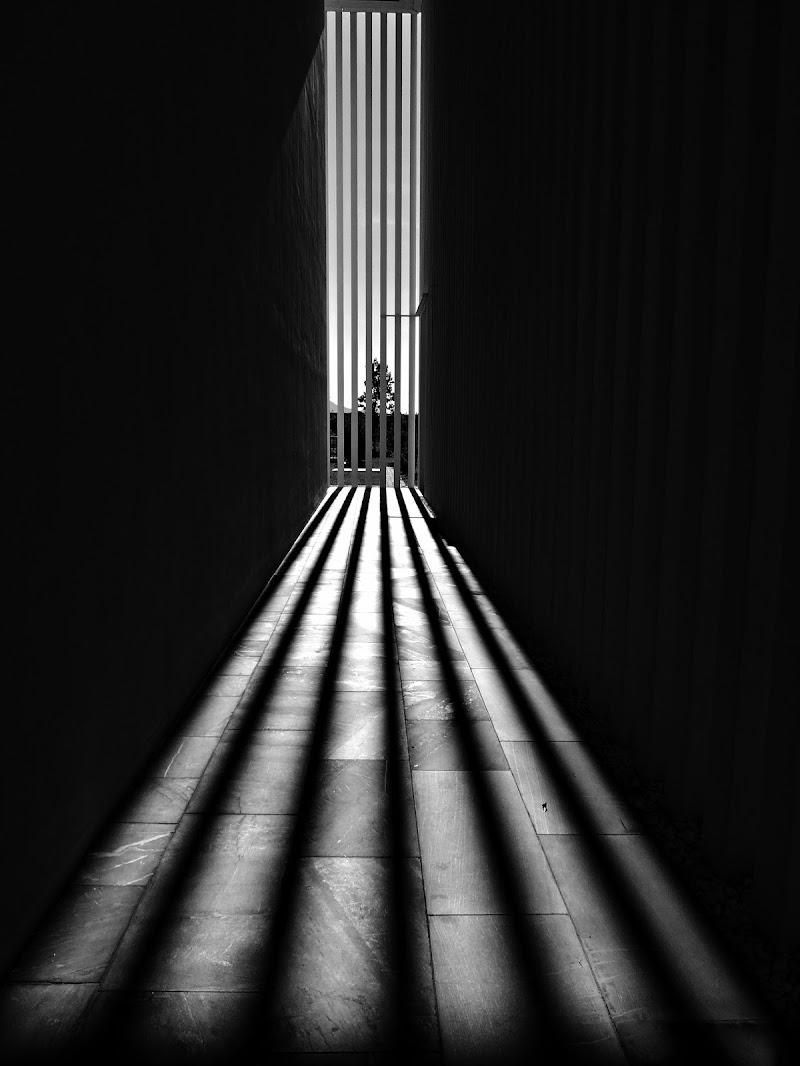 Luci ed ombre di donyb
