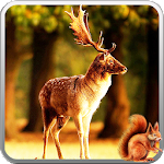 Winter Forest 3D Icon