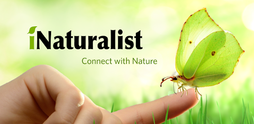 iNaturalist - Apps on Google Play