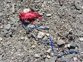 Photo: Aerial litter