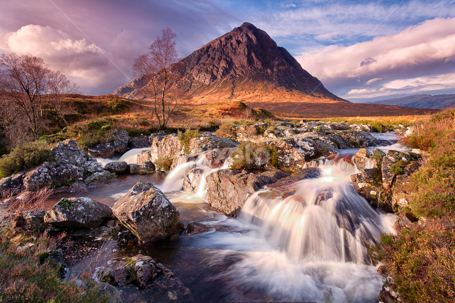 Buachaille Etive Mor by Tony Thompson - Landscapes Mountains & Hills