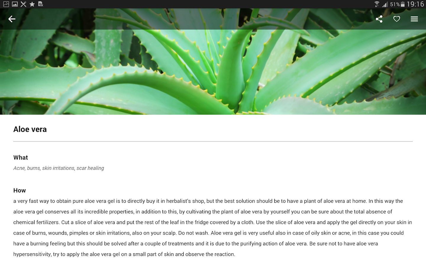 Natural Remedies: healthy lifestyle and beauty- screenshot