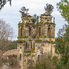 Mosteiro de Seiça by Edu Marques - Buildings & Architecture Decaying & Abandoned ( old house, ancient, old city, trees, tourism, ruins, landscape )