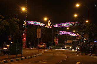 Photo: Year 2 Day 135 -  Lights in Little India
