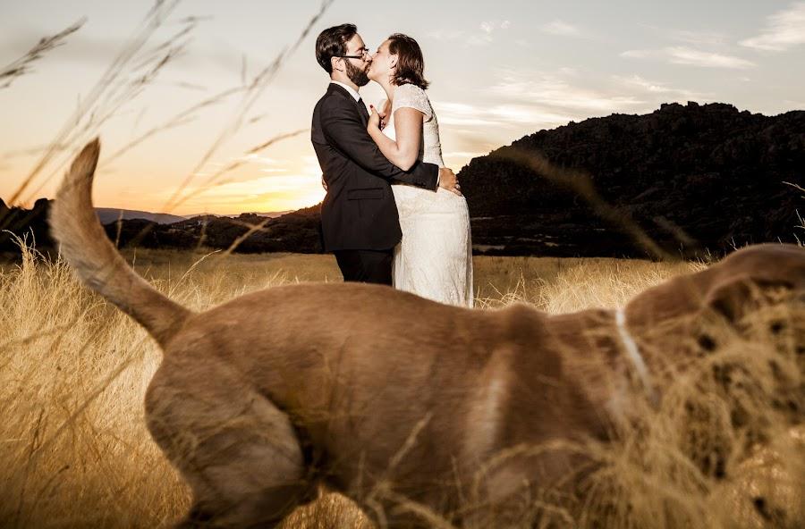 Fotógrafo de bodas Raul Santano (santano). Foto del 23.10.2016
