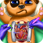 Pet Heart Surgery ER Emergency Hospital