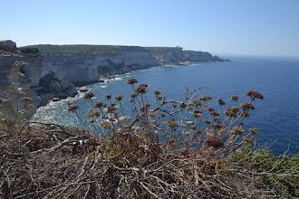 Photo: naša trasa okolo útesov, na konci pevniny je cieľ našej trasy