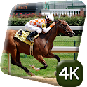 Horse Racing Sport 4K Live icon