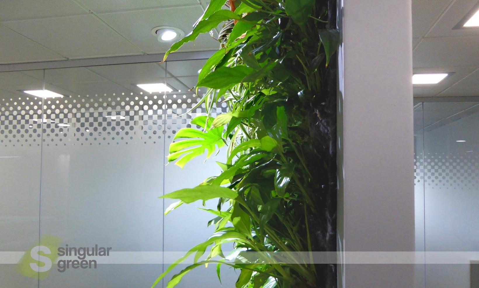 Jardines verticales F+P de interior