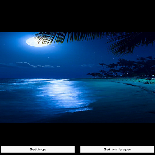 玩免費遊戲APP 下載Live Beach Wallpaper app不用錢 硬是要APP