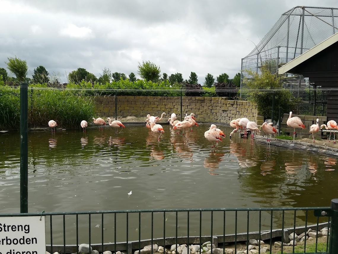 Dierenpark Van Blanckendaell in Tuitjenhorn