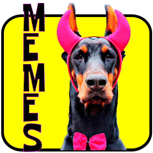 Memes and Dogs
