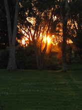 Photo: Year 2 Day 157 - Sunset at the Camp Site in Sale