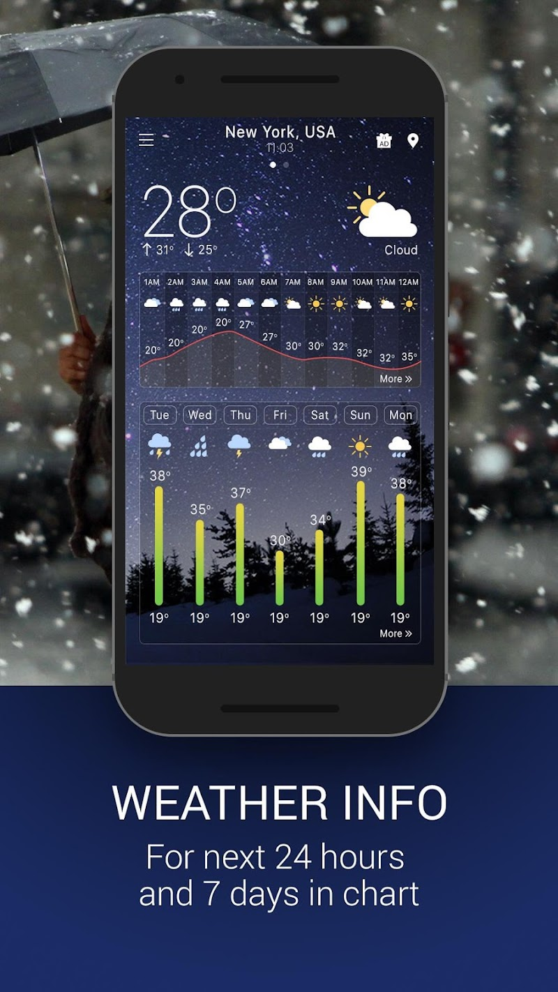 Weather Pro Screenshot 1
