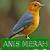 Master Kicau Anis Merah file APK Free for PC, smart TV Download