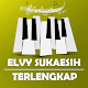 Download Lagu Elvy Sukaesih Kenangan Terpopuler For PC Windows and Mac