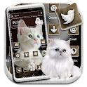 White Kitten Theme icon