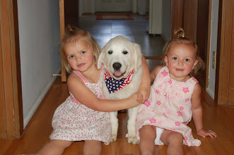 Photo: English Cream Golden Retriever puppy with girls.