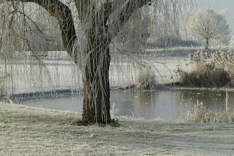 Photo: Gelée de décembre