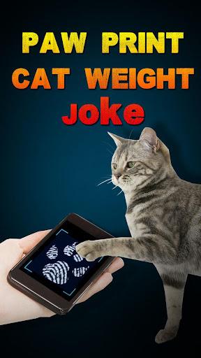 爪印貓體重笑話