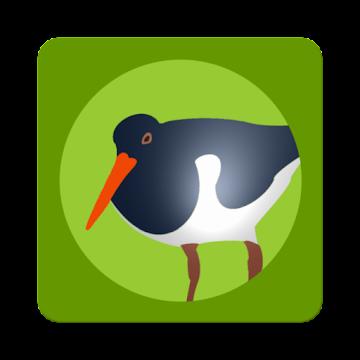 Die Vogel App Logo