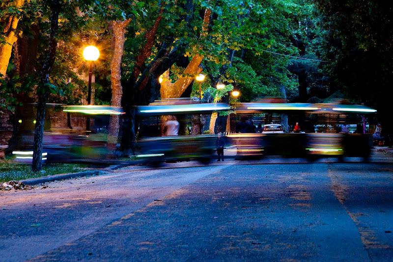 Notturno al parco di Contephoto