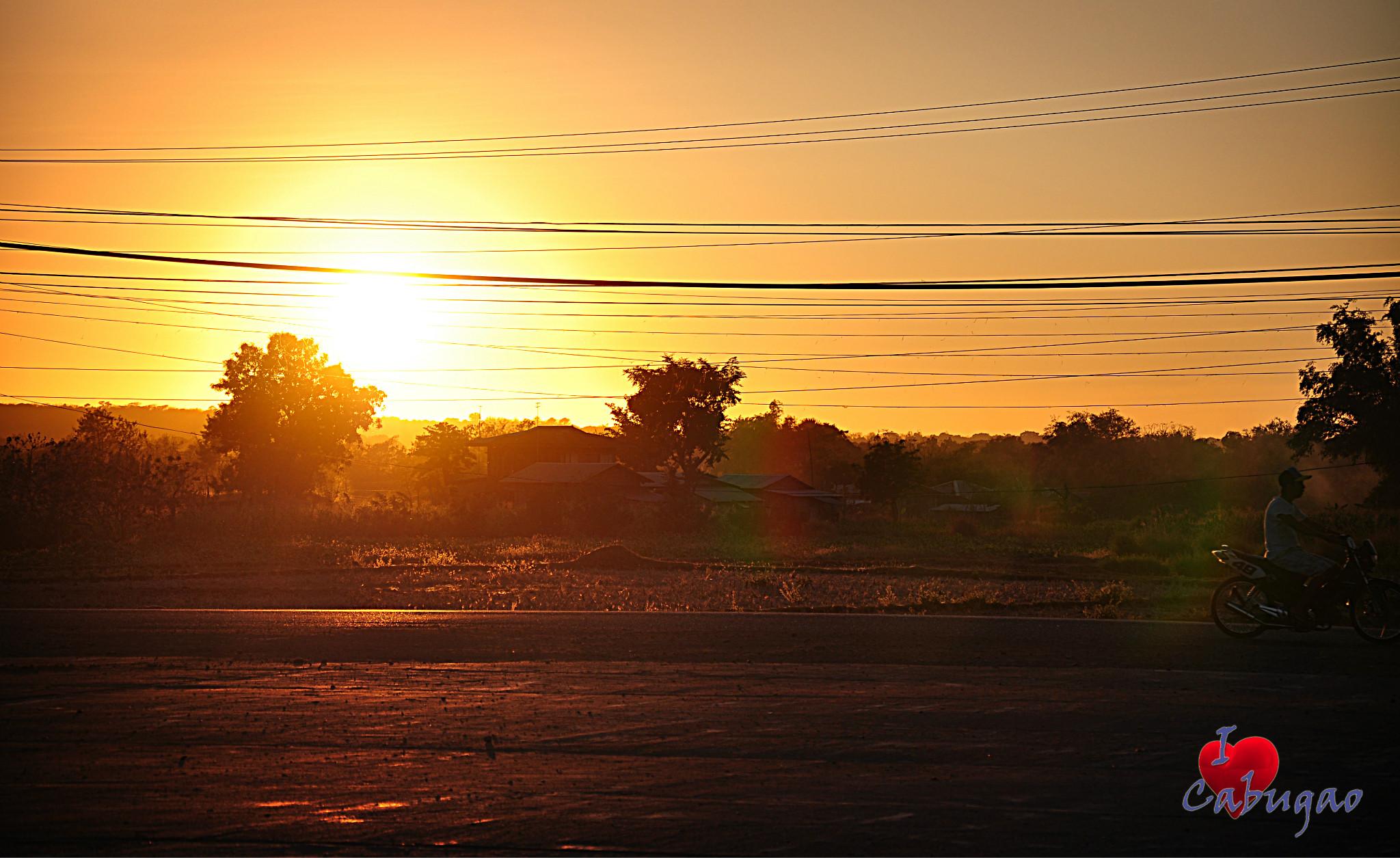 Photo: Sunset rider