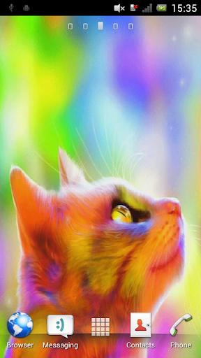 Multicolored cat Live WP