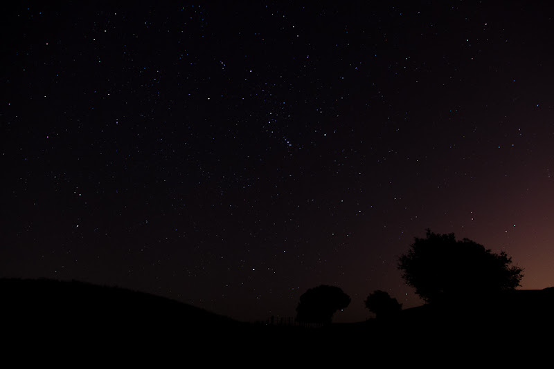 Photo: No luck capturing Orionid Meteor shower :(