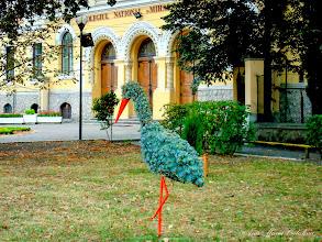 "Photo: Parculet in fata Colegiului National ""Mihai Viteazul"" - (2009.09.06)"