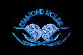 Diamond HODLR Clothing
