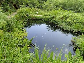 地蔵の沼2
