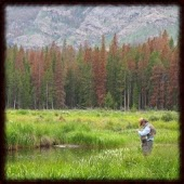 Fly Fishing Wallpapers - Free