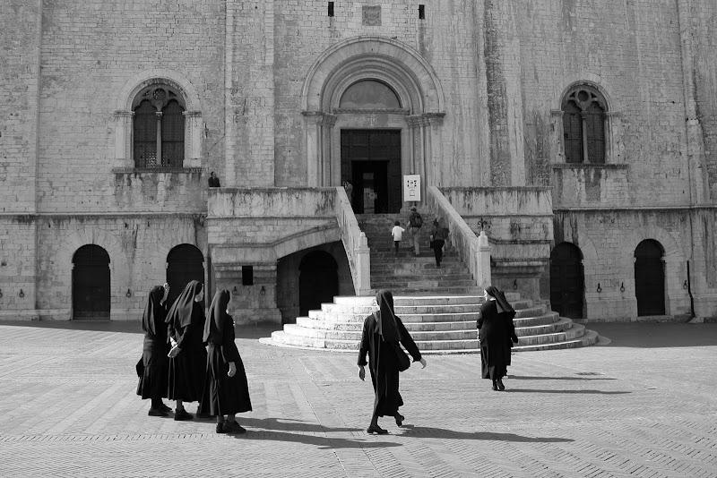 Assisi di Burghy