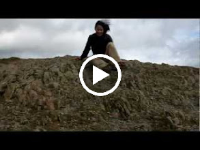 Video: It was gusting really hard and it was difficult to stand and walk