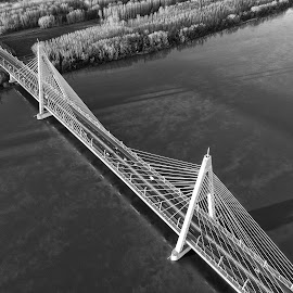Megyeri Bridge in Budapest by Péter Mocsonoky - Buildings & Architecture Bridges & Suspended Structures ( white, danube, budapest, river, bridge, highway, aerial, traffic, hungary )
