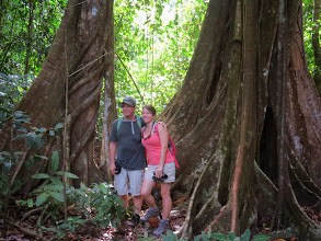 Photo: Terry and Kristine pose with a pair of strangler figs.