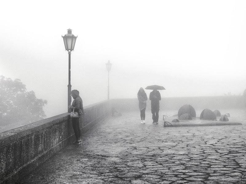 Fra la nebbia di giuliobrega