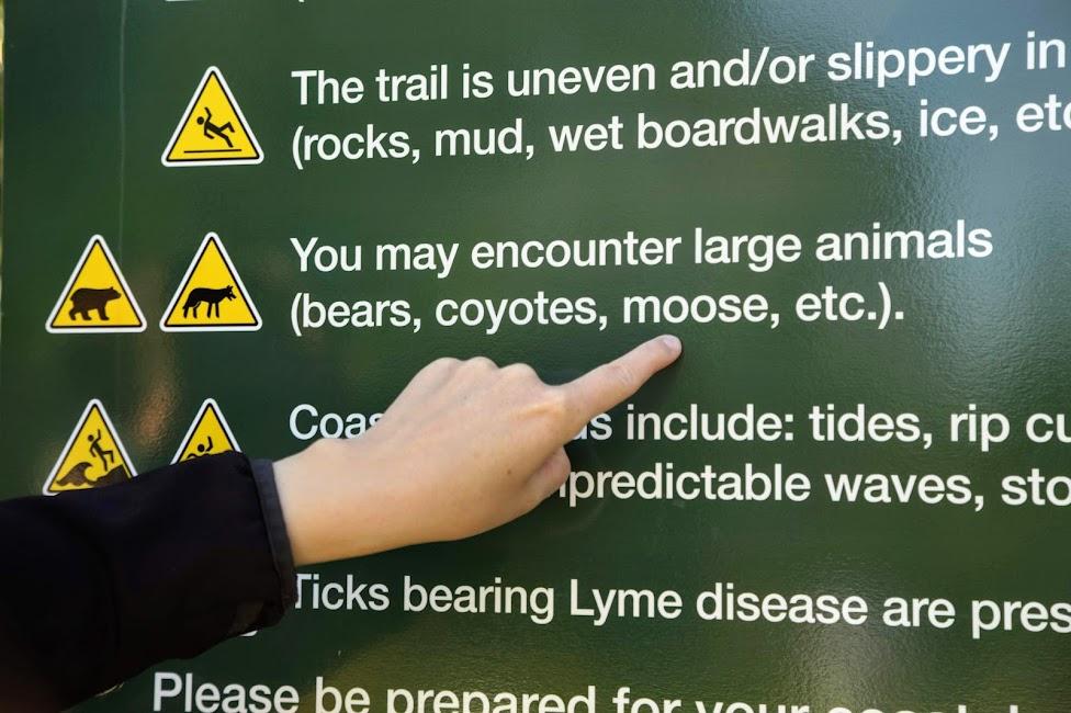 Cape Breton, szlak, tablica, dzikie zwierzęta w Kanadzie