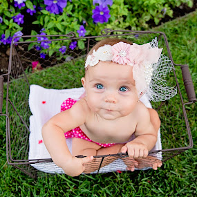Basket Of Joy by Amber Welch - Babies & Children Babies ( girl, headband, basket, blue eyes, baby, garden )