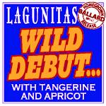 Lagunitas Wild Debut W/ Tangerine And Apricot