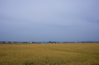 Photo: 北竜町の彩どり・9月の4