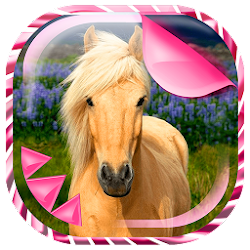 Cute Horses Live Wallpaper