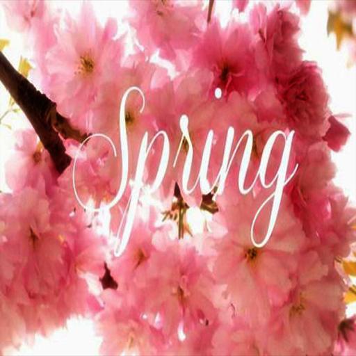 spring quotes apl di google play